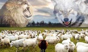 Bài học sư tử và bầy sói